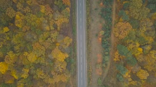 Aerial view of a truck and other traffic driving along the road surrounded by autumn forest