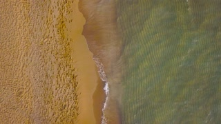 Aerial view of couple in love walking on the beach holding hand in hand