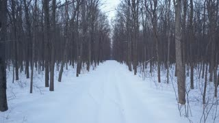 Aerial view on snow-covered road in the forest. Scenic winter landscape