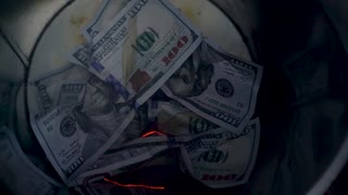 Burning dollars in the trash can close-up