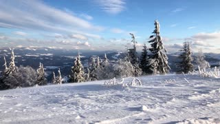 Carpathian mountains covered with snow and strong wind. Clear frosty weather