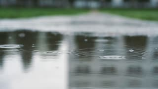Close up shot of legs of a runner in sneakers. Female sports man jogging outdoors in a park, stepping into muddy puddle.