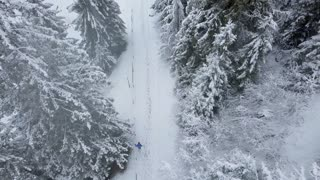 Flight over snowstorm in a snowy mountain coniferous forest and girl who descends from a mountain, uncomfortable unfriendly winter weather