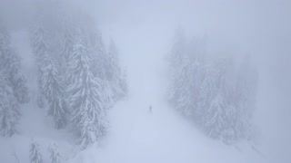 Flight over snowstorm in a snowy mountain coniferous forest and on the ski track with unrecognizable skiers, uncomfortable unfriendly winter weather.