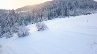 Flight over snowy mountain coniferous forest at sunset. Clear sunny frosty weather