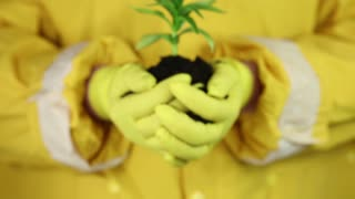 A human in yellow protective suit with yellow gloves holding in hands soil and a green young plant