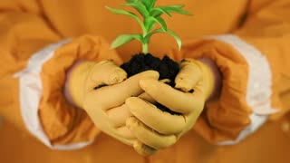 A human in orange protective suit with orange gloves holding in hands soil and a green young plant