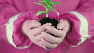Woman in pink protective suit with pink gloves holding in hands soil and a green young plant