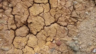 Barren land video stock footage