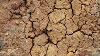 Barren land. Yellow soil with cracks
