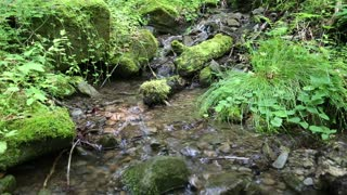 Beautiful brook with environmentally safe water