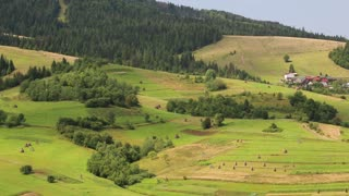 Beautiful green and yellow hills and houses with red roofs in village, Ukraine