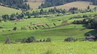 Beautiful green hills in village in Carpathian Mountains, Ukraine