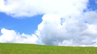 Beautiful nature - green grass, white clouds and blue sky