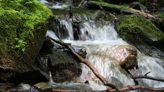 Beautiful small brook and stones with green moss