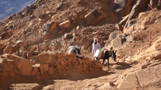 Bedouin and two donkeys. Mount Sinai. Egypt. Mount Sinai, also known as Mount Horeb, is a mountain in the Sinai Peninsula of Egypt that is the traditional and most accepted identification of the Biblical Mount Sinai.