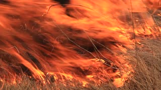 Blaze video stock footage