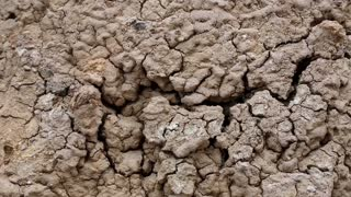 Close up of yellow soil with cracks