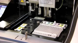 Electrophoresis system with chip for nucleic acids analysis
