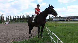 Equestrian sport. Girl and black horse on hippodrome
