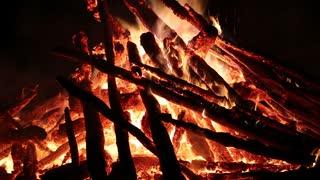 Flames of bonfire. Burning firewood