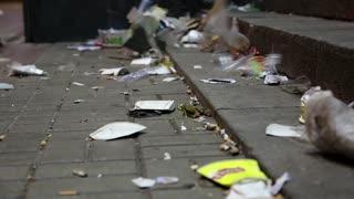 Garbage lying on the street