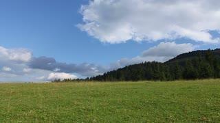 Green Carpathian mountains and blue sky