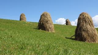 Haystacks on green field