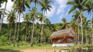 Little house amongst palms on the Koh-Chang island in Thailand