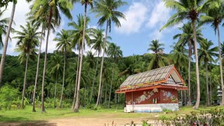 Little house amongst palms on the Koh-Chang island, Thailand