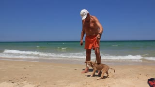 Old man with funny dog on the beach in Tunisia