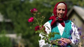 Old woman stands in flowers near his house and looks at the camera. Ukrainian elderly woman in red headscarf stands near wooden hut and looks at the camera. Female looks at the camera and smiles