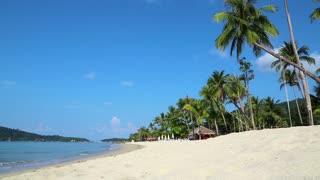 Palms on the beach of a beautiful island (sound)