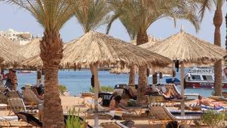 People in recreation area near beach in Sharm El Sheikh, Egypt