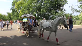 Royal carriage video stock footage