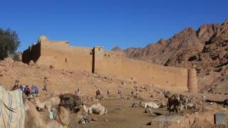 Sinai Peninsula. Egypt. Saint Catherine's Monastery, commonly known as Santa Katarina lies on the Sinai Peninsula, at the mouth of a gorge at the foot of Mount Sinai in the city of Saint Catherine in Egypt South Sinai governorate