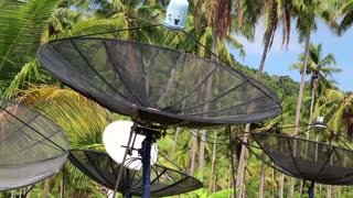 Satellite dishes in wood amongst palm trees on the Koh-Chang island in Thailand