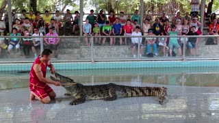THAILAND, PATTAYA, APRIL 1, 2014: People at extreme crocodile show in Pattaya, Thailand