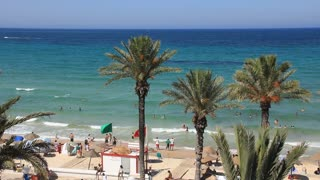 Three palms on the beach