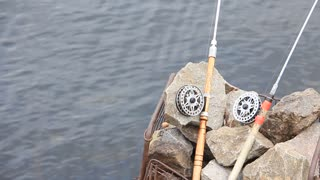 Two spinning rods