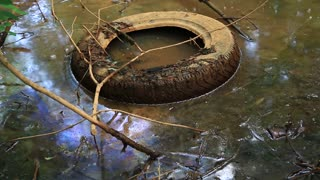Abuse of environment. Old tyre lies on the river bank, environmental pollution