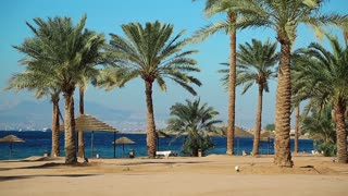 Tropical resort in Tala Bay, Hashemite Kingdom of Jordan. Palms on the beautiful beach. Red sea, gulf of Aqaba. View on Israel and Egypt in the distance