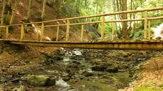 Wooden foot bridge over small river in forest in Carpathian Mountains