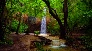 Landscape of a small beautiful waterfall peacefully falling off the rock into the small lake in green forest at spring or summertime