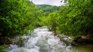 Stormy mountain river in the forest, a strong current, a catastrophe, in the distance in the forest defocus