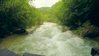 This is a shot of beautiful scenery of a rough mountain river flowing down fast with white foam in the direction to the camera in lush green forest. The view was captured in the Crimea