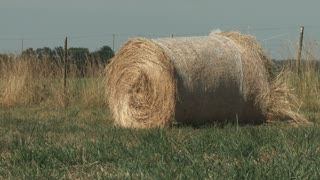 A large round bale of hay in a field in Kansas.