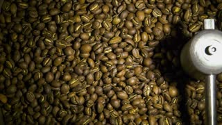 Freshly roasted coffee beans on a cooling tray, being mixed by a rotating mechanical arm. Slow motion footage.