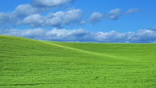Green grassy field with blue sky and white fluffy clouds passing by