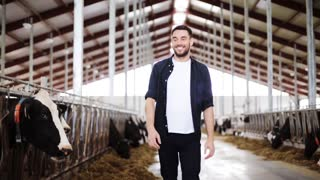 agriculture industry, farming, people and animal husbandry concept - young man or farmer with herd of cows in cowshed on dairy farm